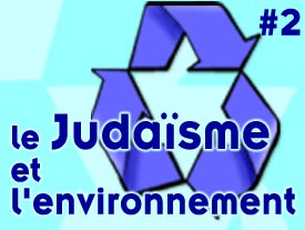 Le judaïsme et l'environnement - Deuxième partie